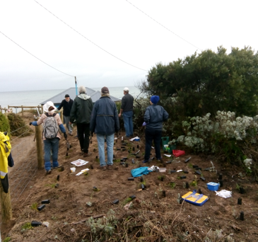 Frankston Beach cleanup